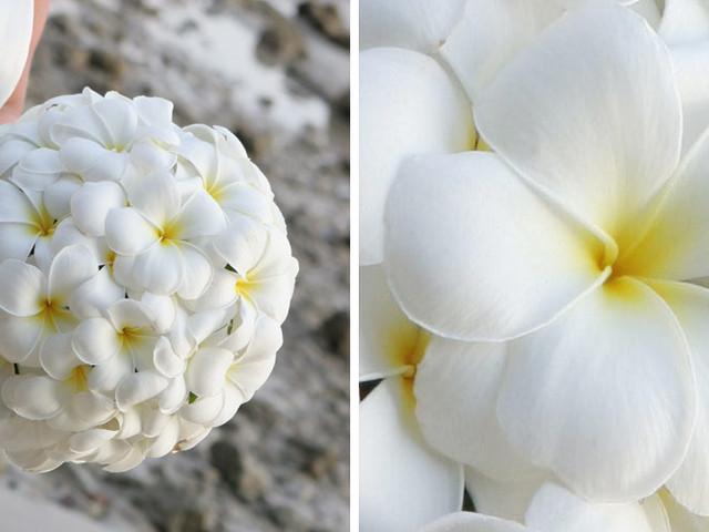 Wedding Flowers Explained