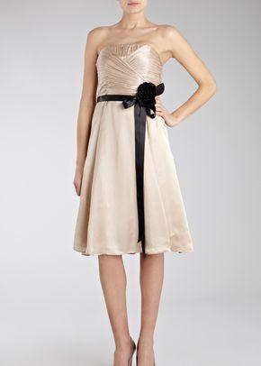 Allure Short Dress Champagne, Coast Bridesmaid