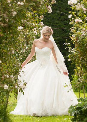 english rose, Lyn Ashworth
