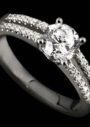 Perfect Plan, Perfect Ring