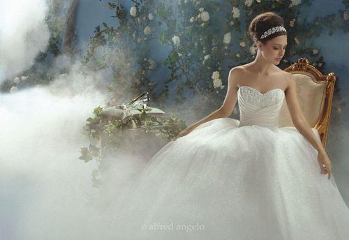 Cinderella 205, Alfred Angelo