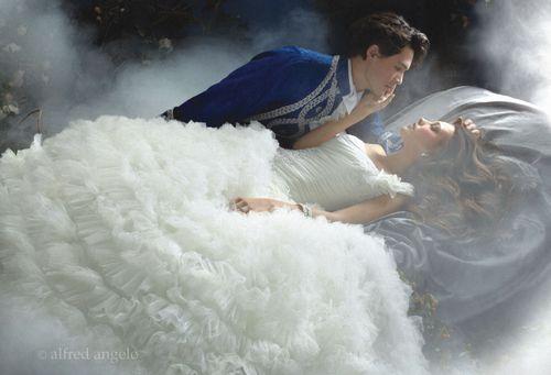 Sleeping Beauty 203, Alfred Angelo