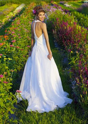 D5203, Eternity Bride