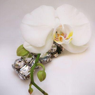florist elegant flow 201502021106326561452