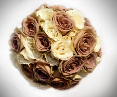 Soft Ivory & Brown Roses