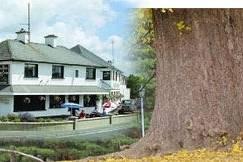 Horse & Hound Inn Hotel